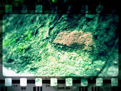 Affioramenti potenzialmente relativi alla Necropoli Etrusca di Orvieto