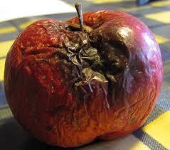 La mela marcia