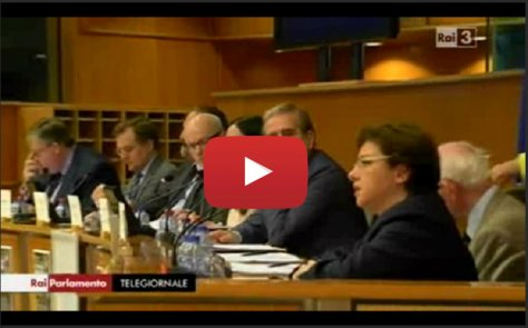 Lucia Vergaglia Video Rai Parlamento
