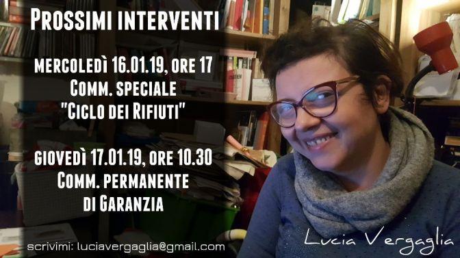 Lucia Vergaglia: interventi in commissione il 16 e 17 gennaio 2019