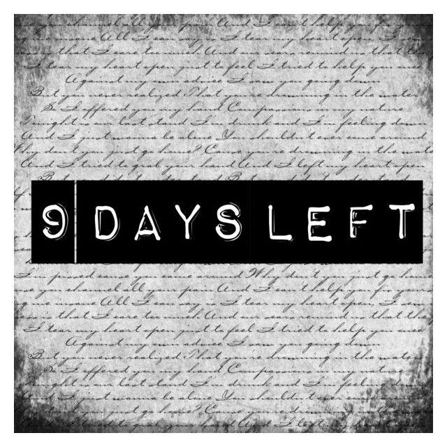 Countdown elezioni Orvieto ed europee. Vergaglia: -9. Sburocratizzazione, pubblica amministrazione digitale e democrazia diretta.